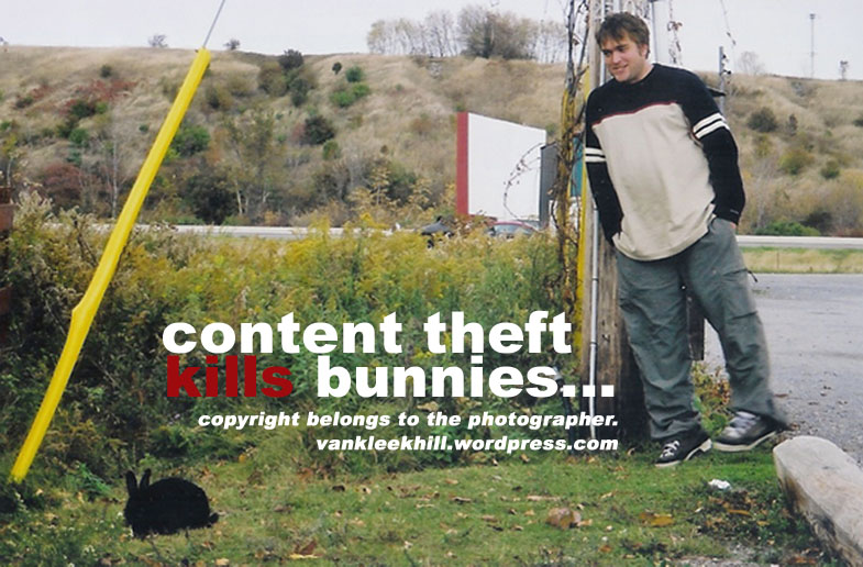 ...content theft kills bunny rabbits