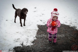 This is a picture of my daughter Paige (2-years old) and our dog Riley (6-years old) playing in our driveway, last Spring. Riley kept bringing the ball back to her so patiently (& consistently!), all the while she giggled and threw the ball for him repeatedly. It was a sweet game between them…