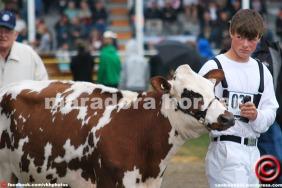 maradora horner 2014 vkh fair 03b feat