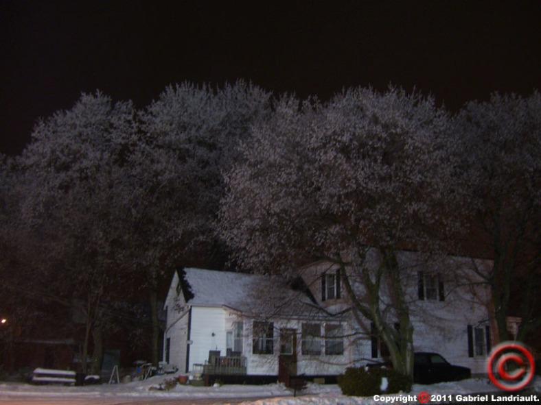 frost trees in Vankleek Hill