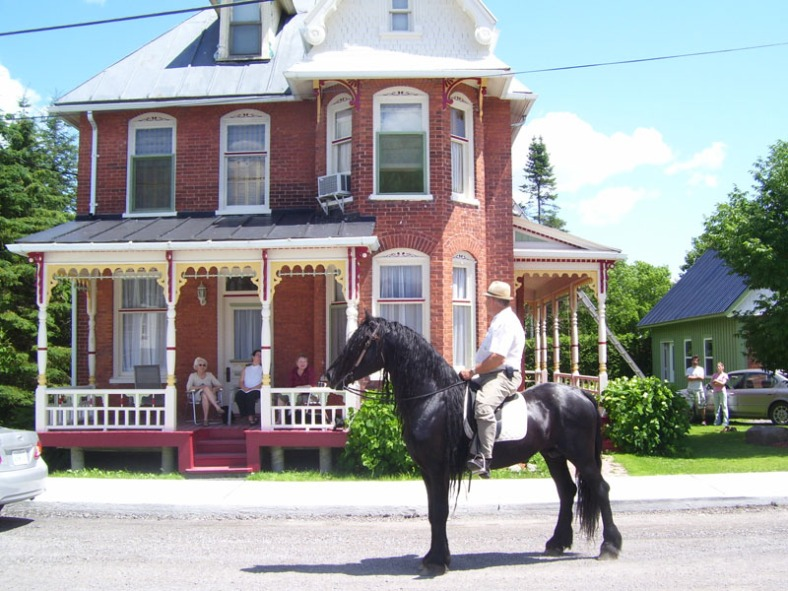 the vankleek hill horse and buggy parade